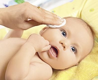 Лейкоциты у новорожденного
